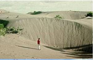 Gumuk pasir Parangtritis (Budiyanto,2011)